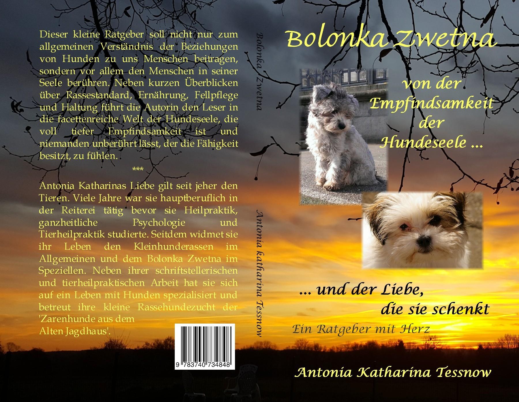 Bolonka Zwetna – Ein Ratgeber mit Herz