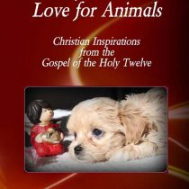 Jesus' Love for Animals